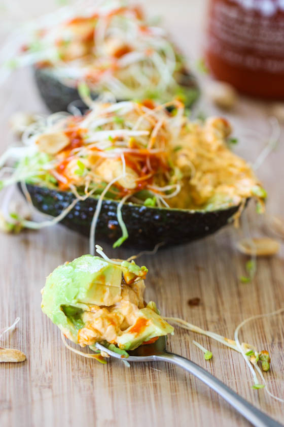 stuffed avocados -5689